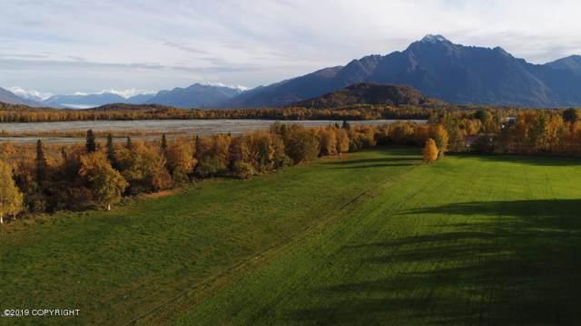 15105 E Rocky Point Drive, Palmer, AK 99645 (MLS #19-19352) :: The Adrian Jaime Group | Keller Williams Realty Alaska