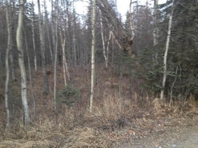 2571 E Fairview Loop, Wasilla, AK 99654 (MLS #19-19409) :: RMG Real Estate Network | Keller Williams Realty Alaska Group