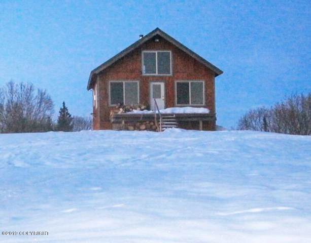 46488 SW Fox River Rem Sw, Homer, AK 99603 (MLS #19-19413) :: Wolf Real Estate Professionals