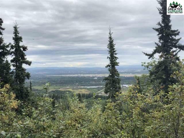 1454 Chena Ridge Road, Fairbanks, AK 99709 (MLS #19-19759) :: Roy Briley Real Estate Group
