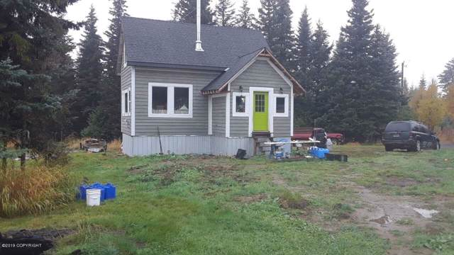 65229 Louis Huber Avenue, Anchor Point, AK 99556 (MLS #19-19775) :: RMG Real Estate Network | Keller Williams Realty Alaska Group