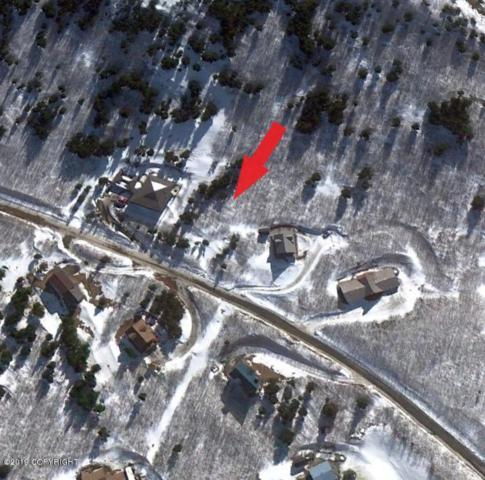 L6 B1 Bear Valley, Anchorage, AK 99516 (MLS #19-2006) :: The Huntley Owen Team