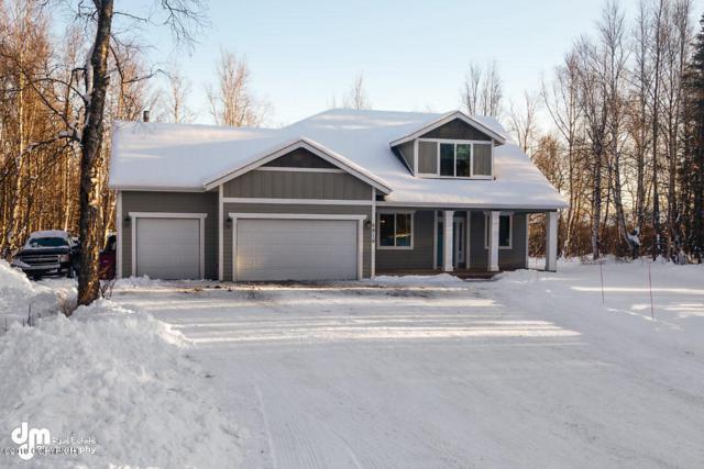 6819 S Lark Circle, Wasilla, AK 99623 (MLS #19-2115) :: The Huntley Owen Team