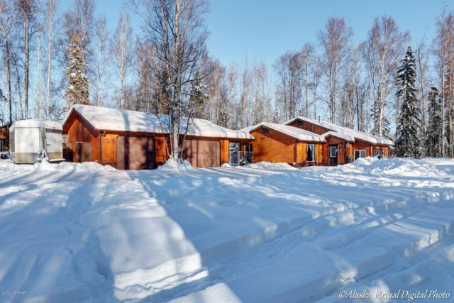 14067 W Hollywood Road, Big Lake, AK 99652 (MLS #19-2146) :: RMG Real Estate Network | Keller Williams Realty Alaska Group