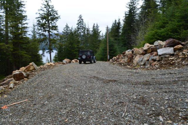 L14 Clark Bay Road, Remote, AK 99000 (MLS #19-2165) :: The Adrian Jaime Group | Keller Williams Realty Alaska