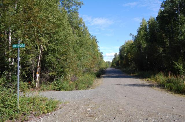 19813 E Twentyinch Avenue, Willow, AK 99688 (MLS #19-2271) :: RMG Real Estate Network   Keller Williams Realty Alaska Group