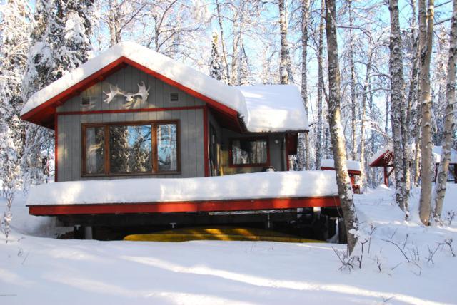 26917 W Long Lake Road, Willow, AK 99688 (MLS #19-2356) :: RMG Real Estate Network   Keller Williams Realty Alaska Group