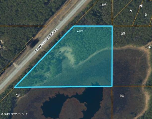 13601 S Knik Goose Bay Road, Wasilla, AK 99654 (MLS #19-2411) :: Team Dimmick