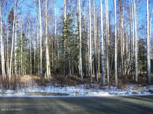 4607 E Big Rock Drive, Wasilla, AK 99654 (MLS #19-2467) :: RMG Real Estate Network | Keller Williams Realty Alaska Group
