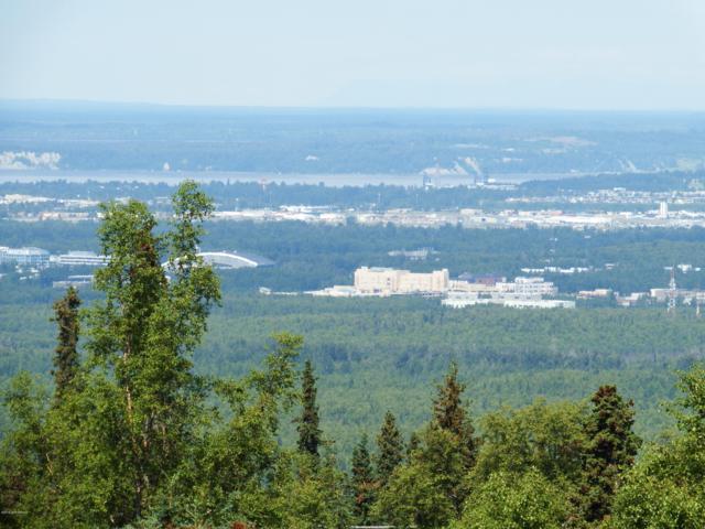 8460 Paine Road, Anchorage, AK 99516 (MLS #19-2481) :: RMG Real Estate Network | Keller Williams Realty Alaska Group