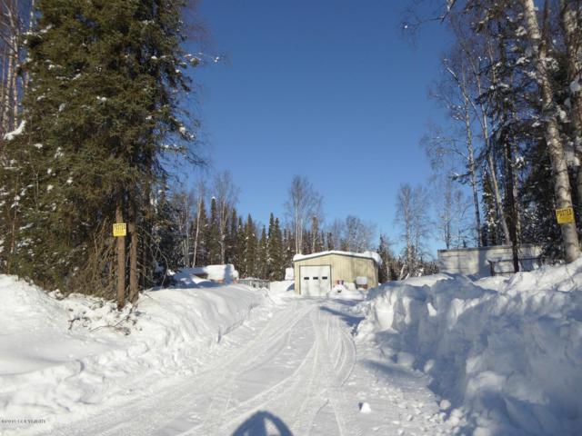 16325 E Sunshine Drive, Talkeetna, AK 99676 (MLS #19-2567) :: RMG Real Estate Network | Keller Williams Realty Alaska Group