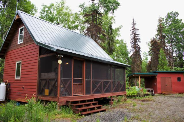 14925 E Fish On Drive, Willow, AK 99688 (MLS #19-261) :: Alaska Realty Experts