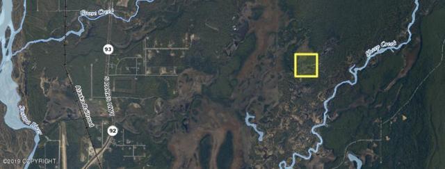MP 93 No Road Trail, Talkeetna, AK 99676 (MLS #19-2759) :: RMG Real Estate Network | Keller Williams Realty Alaska Group