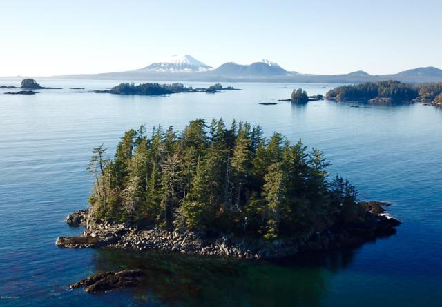L16 Serenity Island, Sitka, AK 99835 (MLS #19-2882) :: The Adrian Jaime Group | Keller Williams Realty Alaska