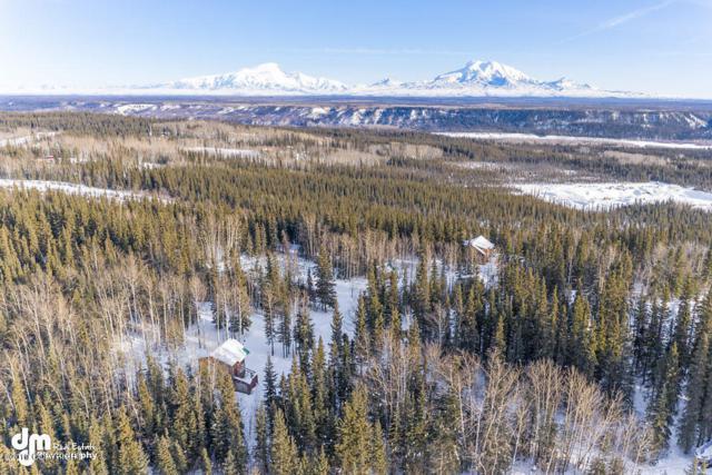 000 Richardson Highway, Gakona, AK 99586 (MLS #19-3121) :: The Adrian Jaime Group   Keller Williams Realty Alaska