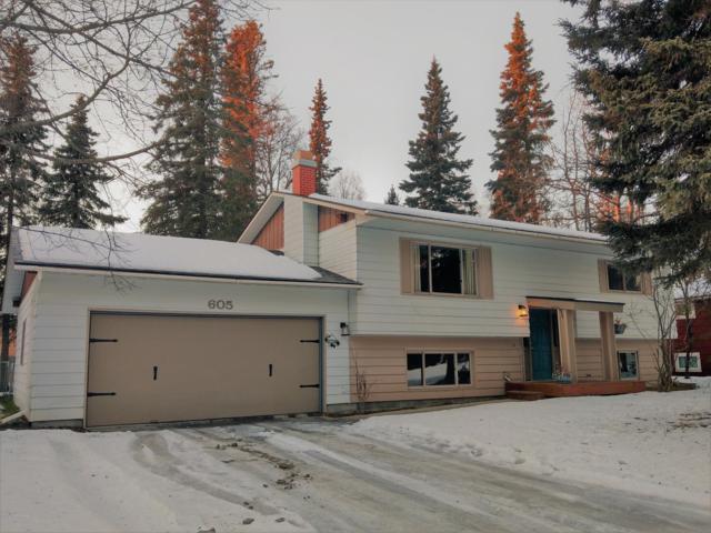 605 Cedar Drive, Kenai, AK 99611 (MLS #19-318) :: Alaska Realty Experts