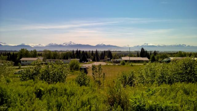 2424 East End Road, Homer, AK 99603 (MLS #19-3225) :: Core Real Estate Group