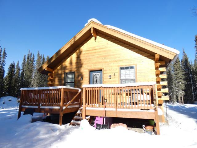 L15 W Willow Avenue, Tok, AK 99780 (MLS #19-3263) :: The Adrian Jaime Group   Keller Williams Realty Alaska
