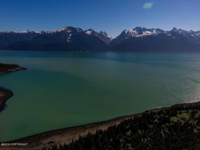 L1 Rutzebeck Road, Haines, AK 99827 (MLS #19-332) :: Alaska Realty Experts