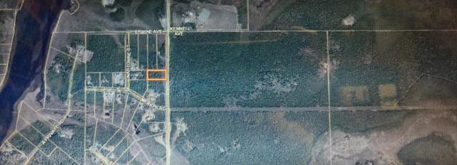 L7 B5 Otter Trail Road, Sterling, AK 99672 (MLS #19-3348) :: RMG Real Estate Network | Keller Williams Realty Alaska Group