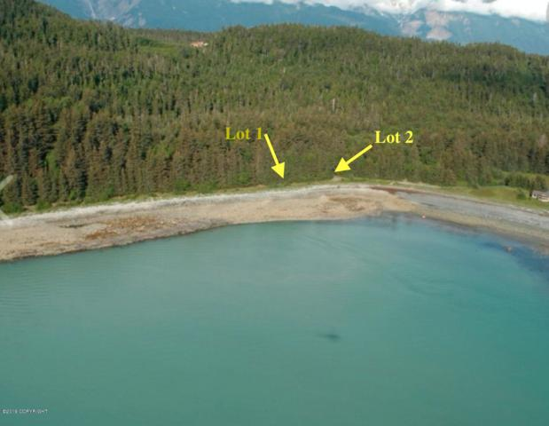 L2 Rutzebeck Road, Haines, AK 99827 (MLS #19-335) :: Alaska Realty Experts