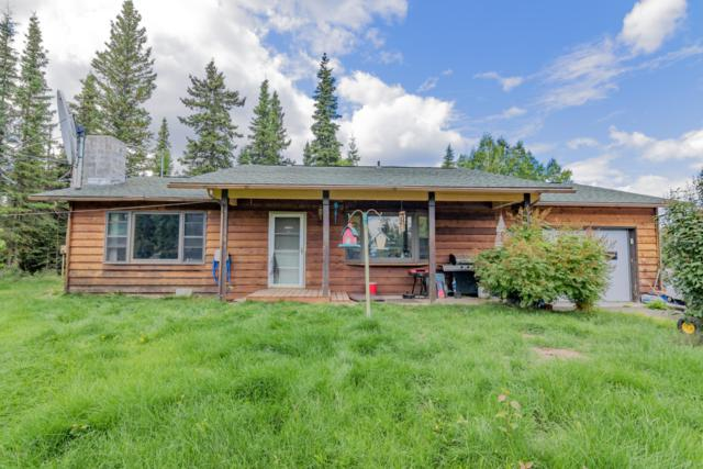 36750 Feuding Lane, Sterling, AK 99672 (MLS #19-3430) :: RMG Real Estate Network | Keller Williams Realty Alaska Group