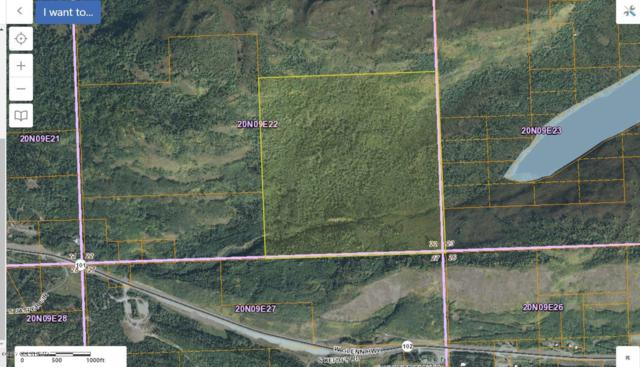D001 Glenn Highway, Chickaloon, AK 99674 (MLS #19-346) :: RMG Real Estate Network | Keller Williams Realty Alaska Group