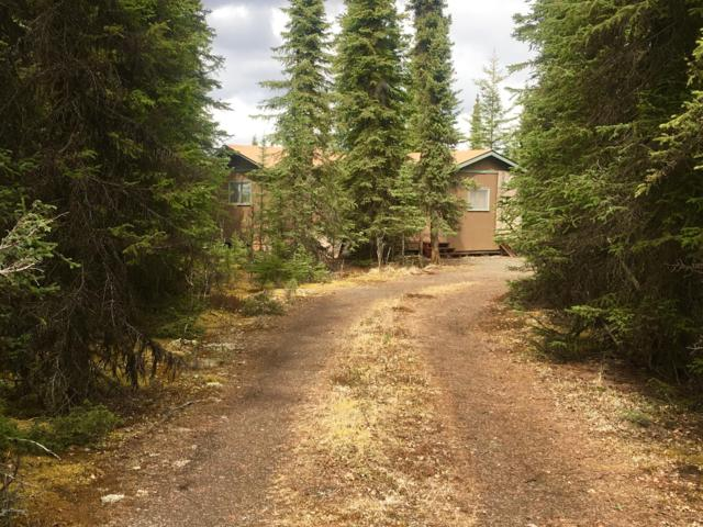 36796 Sandy Circle, Soldotna, AK 99669 (MLS #19-3547) :: The Adrian Jaime Group | Keller Williams Realty Alaska