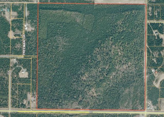 36280 Robinson Loop Road, Sterling, AK 99672 (MLS #19-3584) :: RMG Real Estate Network | Keller Williams Realty Alaska Group