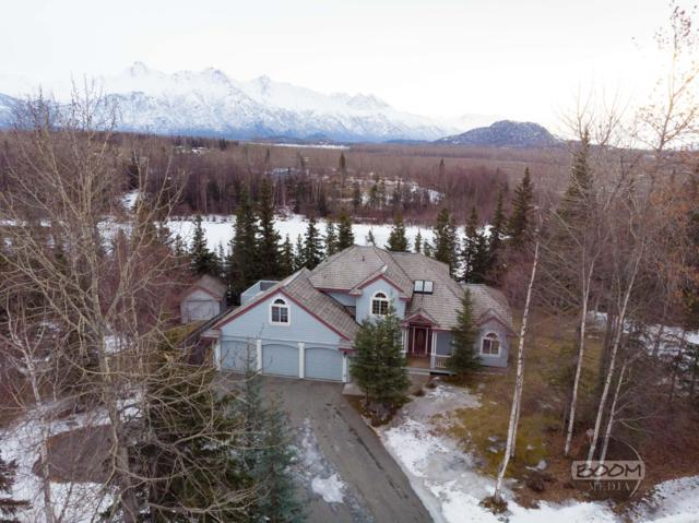 3185 S Lakeshore Loop, Palmer, AK 99645 (MLS #19-3677) :: Core Real Estate Group