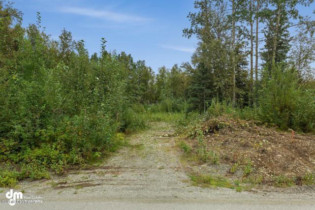 5626 E Rutan Avenue, Wasilla, AK 99654 (MLS #19-3690) :: Alaska Realty Experts