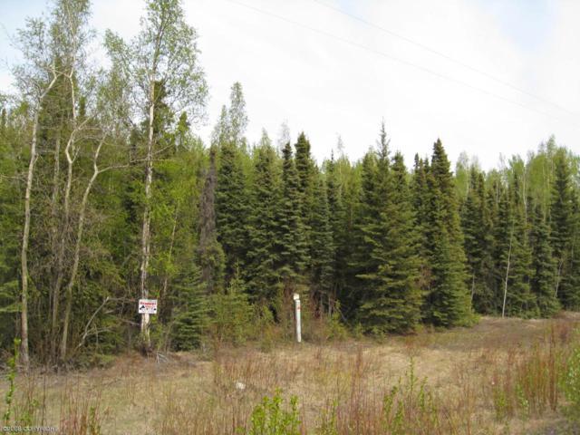 28210 Sterling Highway, Sterling, AK 99672 (MLS #19-3758) :: RMG Real Estate Network | Keller Williams Realty Alaska Group
