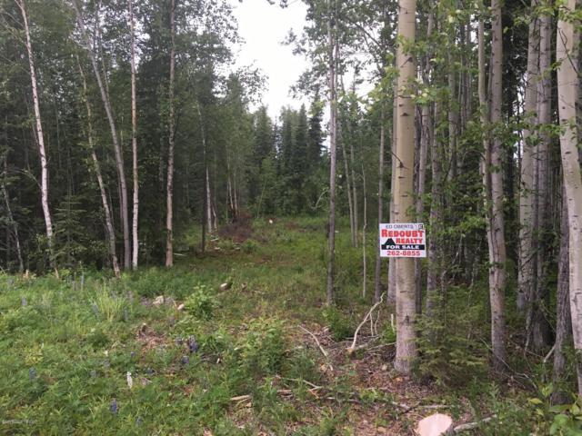 L6 Adkins Road, Sterling, AK 99672 (MLS #19-3762) :: RMG Real Estate Network | Keller Williams Realty Alaska Group