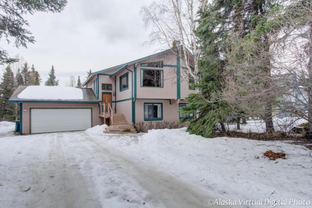 12720 Lupine Road, Anchorage, AK 99516 (MLS #19-3792) :: The Adrian Jaime Group   Keller Williams Realty Alaska