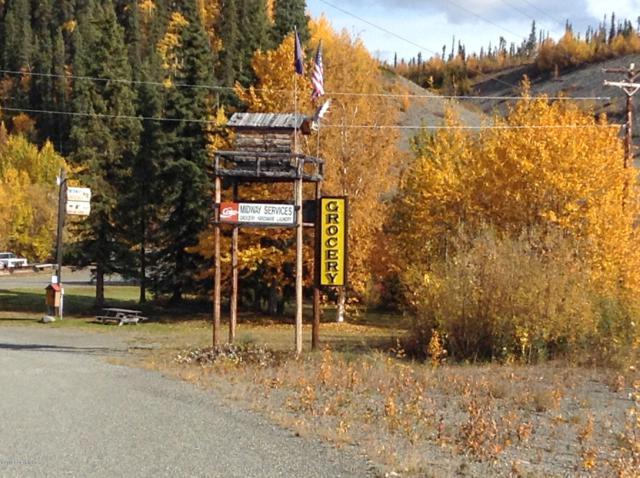 Mile 61 Tok Cuttoff Highway, Slana, AK 99586 (MLS #19-3865) :: RMG Real Estate Network | Keller Williams Realty Alaska Group