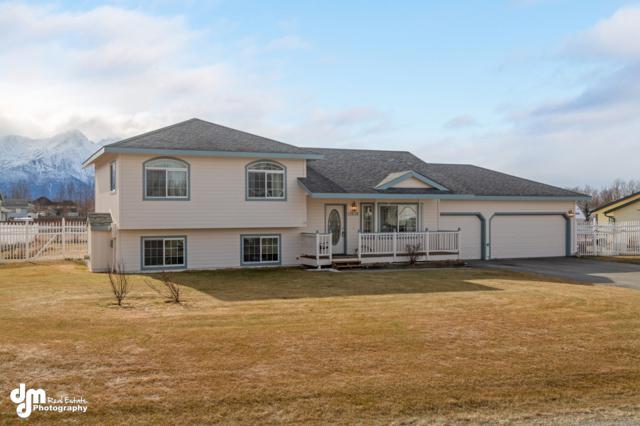 11638 E Annie Lane, Palmer, AK 99654 (MLS #19-3882) :: RMG Real Estate Network | Keller Williams Realty Alaska Group