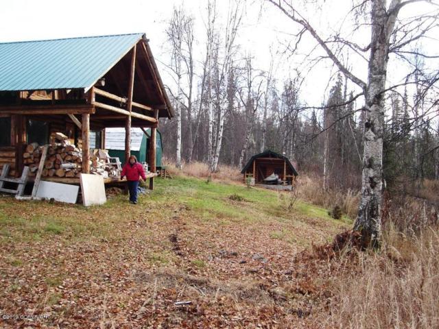 Tr A No Road Chase Area, Talkeetna, AK 99676 (MLS #19-3909) :: RMG Real Estate Network | Keller Williams Realty Alaska Group