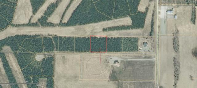 L4 B1 Estelle Court, Soldotna, AK 99669 (MLS #19-3926) :: The Adrian Jaime Group | Keller Williams Realty Alaska