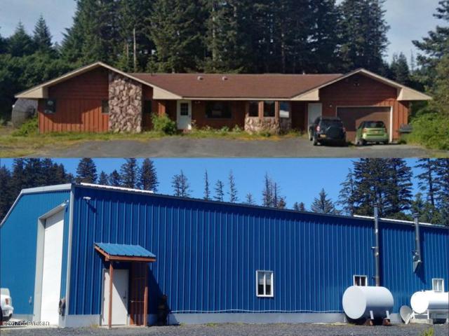 4078 Otmeloi Way, Kodiak, AK 99615 (MLS #19-3998) :: Roy Briley Real Estate Group
