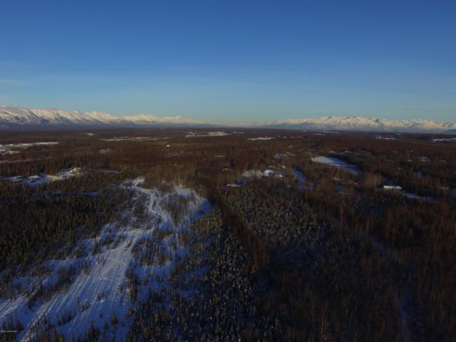 A004 Joe's Road, Wasilla, AK 99623 (MLS #19-4016) :: Core Real Estate Group