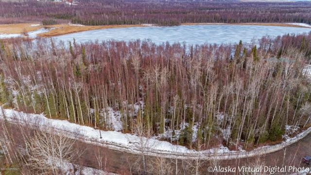 0000 W Lucy Lake Drive, Wasilla, AK 99654 (MLS #19-4063) :: RMG Real Estate Network | Keller Williams Realty Alaska Group