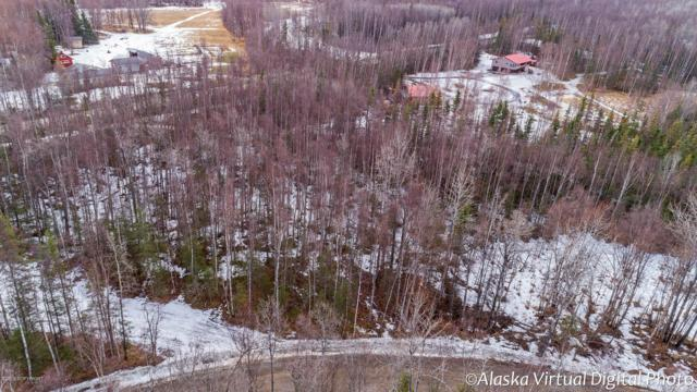 4640 W Lucy Lake Drive, Wasilla, AK 99654 (MLS #19-4070) :: Alaska Realty Experts