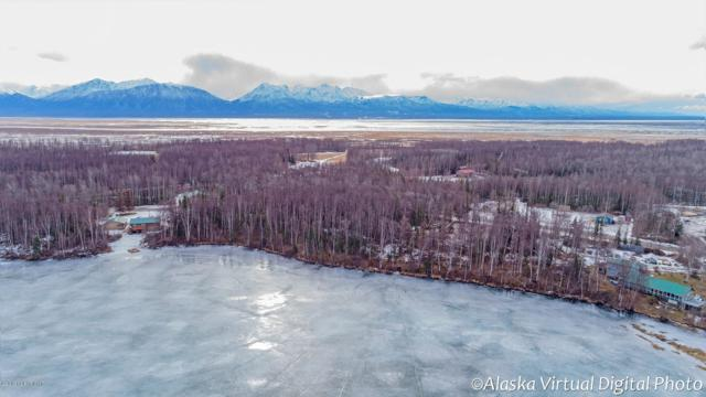 4661 W Lucy Lake Road, Wasilla, AK 99654 (MLS #19-4072) :: Alaska Realty Experts