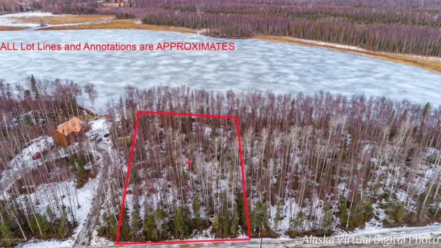 5750 S Hayfield Road, Wasilla, AK 99654 (MLS #19-4075) :: Alaska Realty Experts