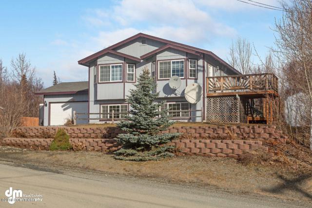 9931 E Tern Drive, Palmer, AK 99645 (MLS #19-4088) :: RMG Real Estate Network | Keller Williams Realty Alaska Group