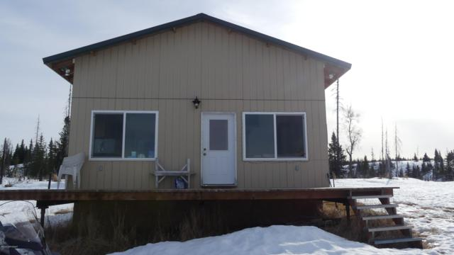 L1 B2 Wells Street, Ninilchik, AK 99639 (MLS #19-4145) :: Roy Briley Real Estate Group