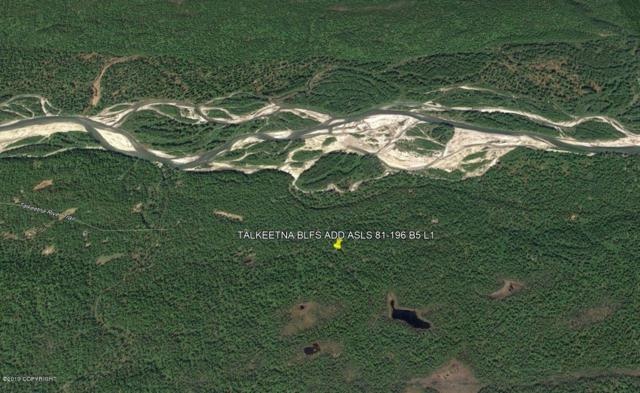 L1 B5 No Road, Talkeetna, AK 99676 (MLS #19-4364) :: RMG Real Estate Network | Keller Williams Realty Alaska Group
