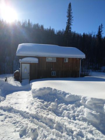 18168 Eska Mountain Way, Palmer, AK 99645 (MLS #19-4473) :: Core Real Estate Group