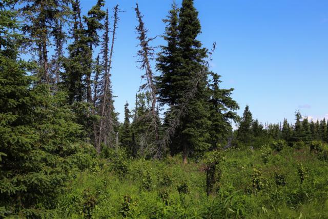C16 Alaskan Wildwood Ranch(R), Anchor Point, AK 99556 (MLS #19-455) :: Core Real Estate Group