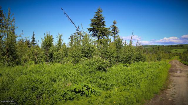 C24&25 Alaskan Wildwood Ranch(R), Anchor Point, AK 99556 (MLS #19-459) :: Alaska Realty Experts